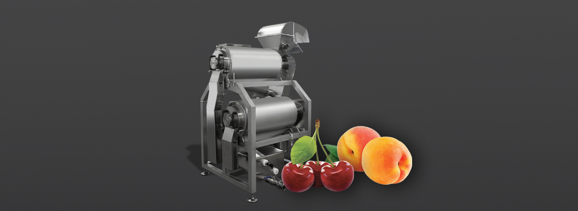 sraml-stone-fruit-processing
