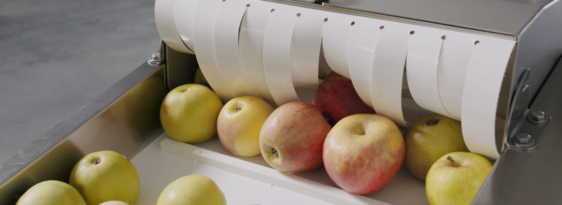 sraml-fruit-vegetable